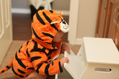 Getting ready for Halloween! Let's go Tigers!
