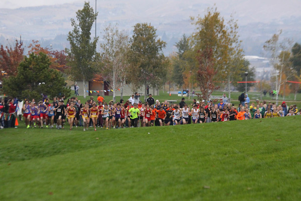 Regionals - Halloween Fun Run