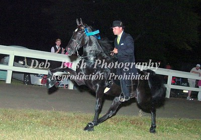 CLASS 26  FOUR YR OLD OPEN SPECIALTY