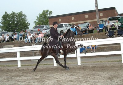 CLASS 3  TWO YR OLD OPEN