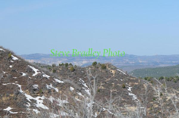 Mt.Carmel XP D5