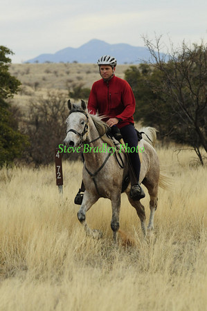 Old Pueblo D2