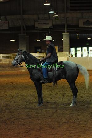 Wild Horse & Burro Show D1