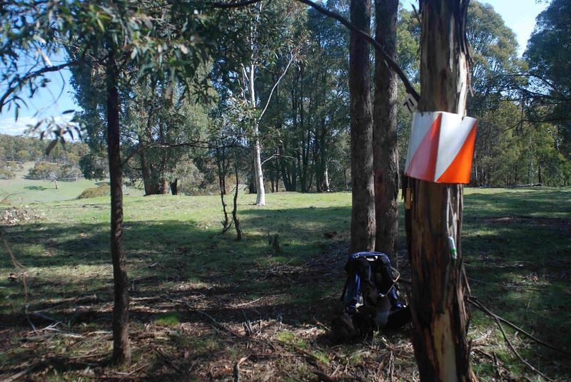 Rogaine course setting in the snow, Tantangara Dam area, NSW, 9/10/10