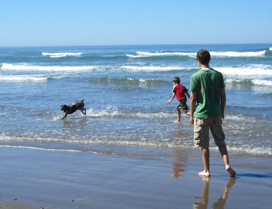 Day at Beach with the dogs