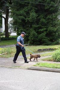 Photo's from  Ridgewood General Alarm Stevens Ave. 6-1-10