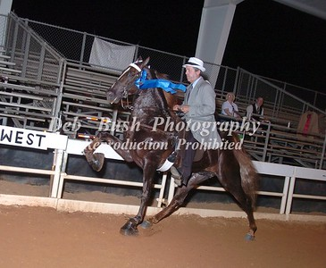 CLASS 32  GA WALKING HORSE EXHIBITORS ASSN MEMBERS SPECIALTY