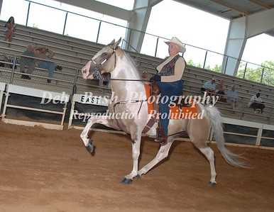 CLASS 9 SPOTTED HORSE OPEN SPECIALTY
