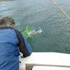 Grandpa nets Wyatt's fish