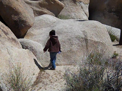 April 23, 2010: Joshua Tree National Park