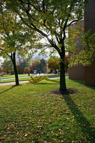 2010, campus, fall
