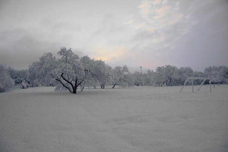 DFW Snow 02-12-10