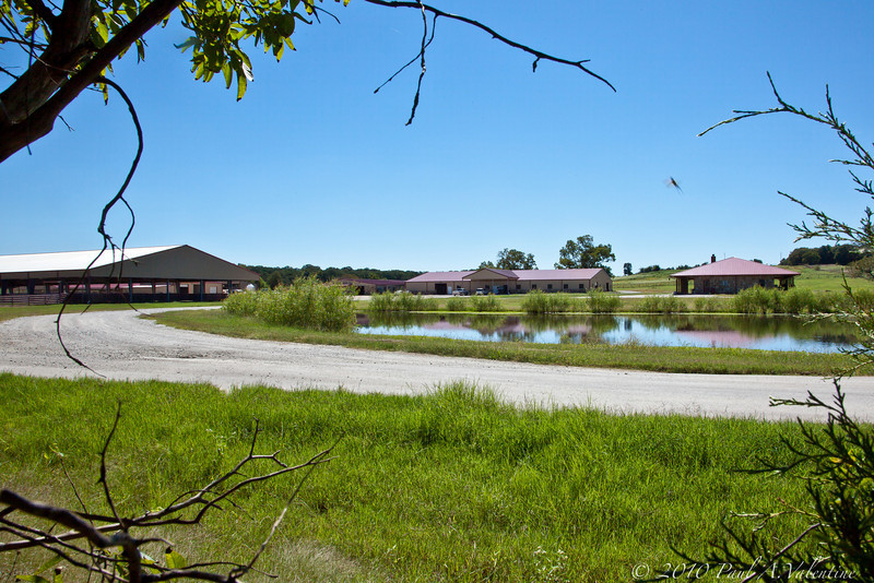 The Horse Ranch that is directly behind Skip and Sara's place. Right across their back fence, as was Mr. Van's Ranch.