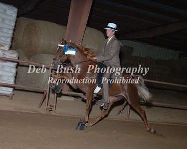 CLASS 13  TWO YR OLDS OPEN