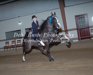 CLASS 2  Youth  11 & Under Specialty