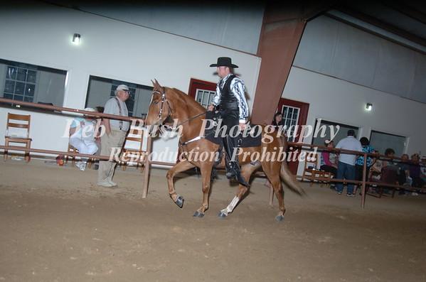 CLASS 22 WALKING HORSE TRAIL PLEASURE OPEN SPECIALTY