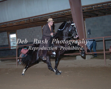 CLASS 4  Three YR  olds Open
