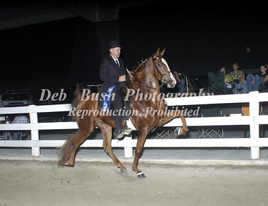 CLASS 22 NATIONALBRED 3 YRS & UNDER