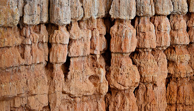 Hoodoo wall details Fairyland Trail, Bryce Canyon Utah
