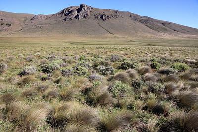 2010 - Patagonia, Argentina