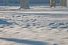 02 03 2010 sparkly snow_0002