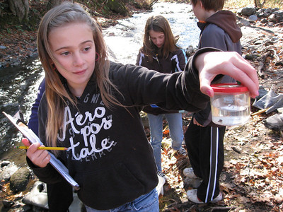 The 5th and 6th grade classes at Albert Bridge School in Brownsville, Vermont  is testing the water at Besaver Brook. Photos by Ava Emerson.