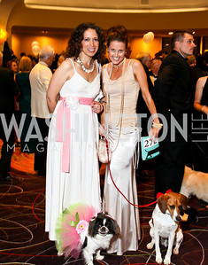 Photo by Tony Powell. The Washington Humane Society Bark Ball. Hilton Hotel. June 5, 2010. Kim Patterson and Chai, Lori Roberts and Timber