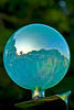 Glass Globe reflection of Prescot Park Garden