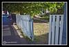 Picket Fence Gate on Washington st