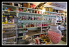 Penny Candy Counter at The Old Country Store