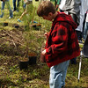 Arbor Day Event, Medford Tree Committee