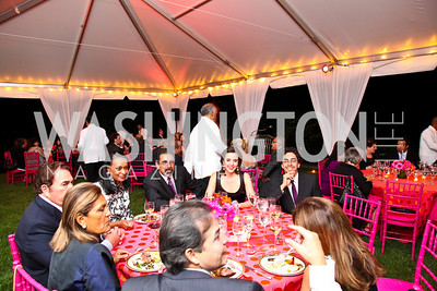 Photo by Tony Powell. Adrienne Arsht Salon Dinner for National Hispanic Foundation for the Arts. September 13, 2010