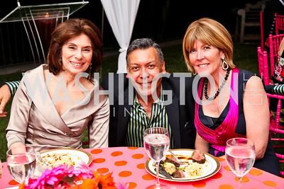 Photo by Tony Powell. Merel Julia, Felix Sanhez, Ginny Grenham. Adrienne Arsht Salon Dinner for National Hispanic Foundation for the Arts. September 13, 2010