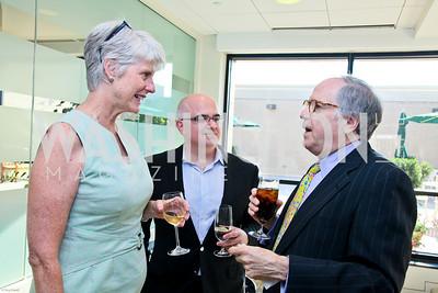 Photo by Tony Powell. Ben & Quinn Bradlee book party. The Washington Post Offices. June 7, 2010. Ann McDaniel, Chris Schroeder, Bob Barnett