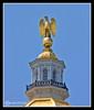 NH State Capital Dome Eagle