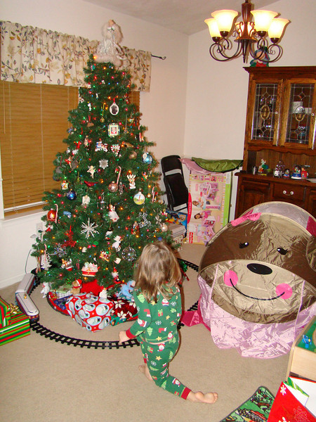 Christmas morning!  Abby's monkey tent..she was so surprised