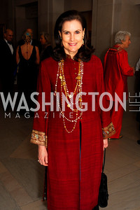 Alexandra de Borchgrave, Freer Sackler Gala, November 17, 2010, Kyle Samperton
