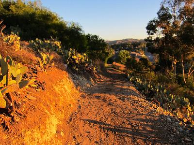 Sun Bask Trail new setion