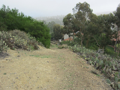 Sun Bask Trail.  We will reroute around this steep and rocky section of Trail.