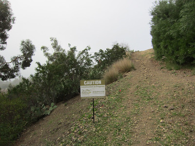 Sun Bask Trail.  Realignment is flagged and we are ready to start building.