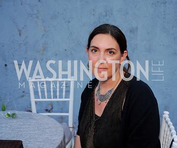 Kyle Samperton,July 8.2010,Longview Gallery,Lisa Rosenstein