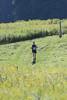 Green Lakes Endurance Runs 50K 2010