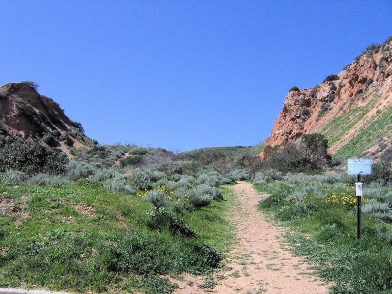 Trail at end of Forrestal Drive (start).