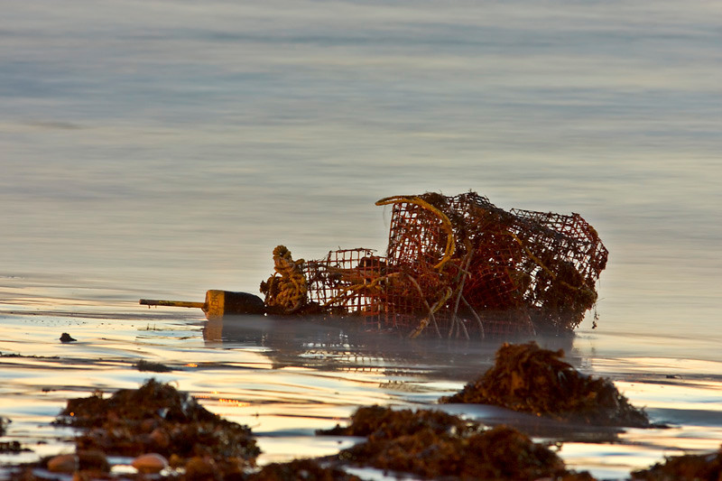 Lobster Trap-12-16-01