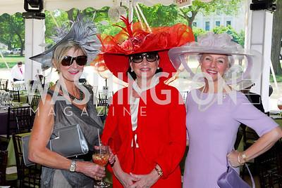 Kyle Samperton,May 6,2010,Sally Akridge,Grace Bender,Caroline Boutte,Trust For The National Mall Luncheon