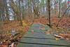 Foot Bridge-11-10-02
