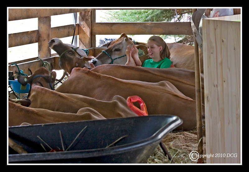 Farm Girl at Stratham Fair