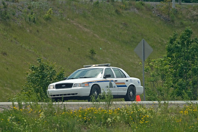 Even more rare than endangered wildlife, they also have law enforcement in Canada.  We never did figure out why.