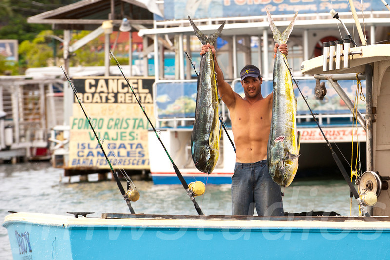 Daily Catch - Ensenada, Puerto Rico