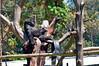 2010 Rwanda-13-mgvp-orphanage-21_14945140519_o